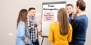 Understanding The Well-Formed Team™ White Paper